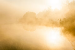 Mist in the morning Stock Image