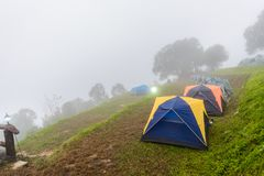 Mist in Morning  Mon Sone View Point, Doi Pha Hom Pok National P. Mist in Morning Tourists and Campground tents, Mon Sone View Point, Doi Pha Hom Pok National Royalty Free Stock Photos