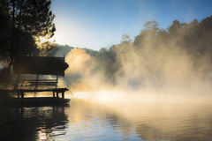 The mist in the morning Stock Photos