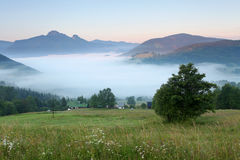 Mist in mountain Stock Photography