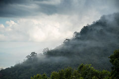 Mist on the mountain Stock Images