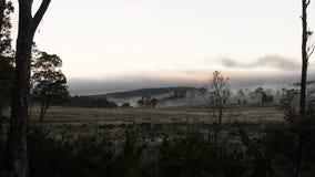 Mist in mountain valley stock video