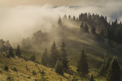 Mist in mountains Stock Image