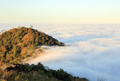 Mist on moutain of thaliand Royalty Free Stock Photos