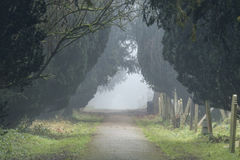 Mist in the Old Cemetery Southampton. A path through the Old Cemetery Southampton on a misty day. Located on Southampton Common Royalty Free Stock Images