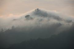 Mist op de berg stock afbeelding