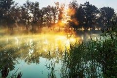 Mist op de rivier Royalty-vrije Stock Afbeelding