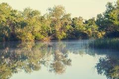 Mist op de rivier Stock Fotografie