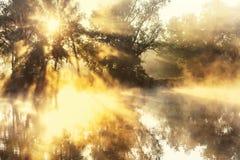 Mist op de rivier Stock Afbeeldingen