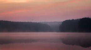 Mist op het meer Stock Fotografie