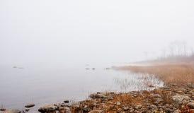 Mist op horizon, die van de Rivier van Ottawa toenemen - Mistige de Rivieroever van Ottawa Stock Fotografie