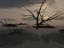 Mist op moeras Royalty-vrije Stock Afbeeldingen