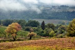 Mist over autumnal Tuscan hill stock photo