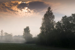 Mist over countryside forest Royalty Free Stock Images