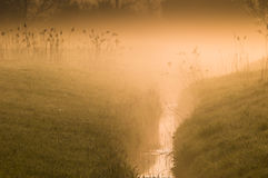 Mist over countryside stream Royalty Free Stock Image