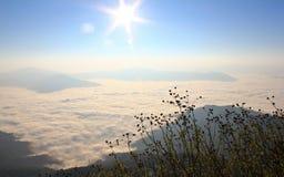 Mist over de heuvel met zonneschijn Stock Afbeeldingen
