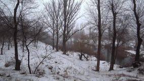 Mist over de huidige rivier in een park, sneeuw, dooi, de lente stock videobeelden