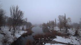 Mist over de huidige rivier in het park, sneeuw, dooi, de lente stock videobeelden