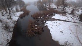 Mist over de huidige rivier in het park, sneeuw, dooi, de lente stock video