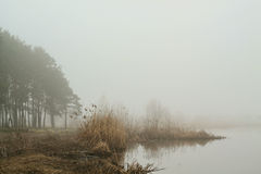 Mist over de rivier Stock Fotografie