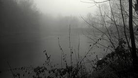 Mist over de vijver Royalty-vrije Stock Foto's