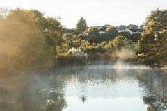 Mist over de vijver bij dageraad Royalty-vrije Stock Foto's