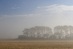 Mist Over the Field Stock Photography