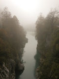 Mist over forest river. Stock Photos