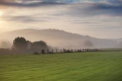 Mist over green meadow and cloudy sky Royalty Free Stock Photos