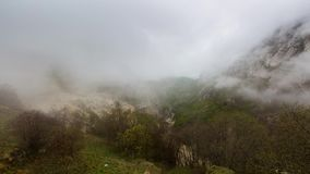 Mist over het bos in de bergen stock footage