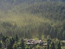 Mist over het Bos van de Fee Royalty-vrije Stock Foto