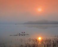 Mist over het meer bij zonsopgang royalty-vrije stock foto's