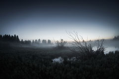 Mist over the lake, dusk over the lake Stock Images