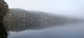 Mist over lake Eecham Rain forest reflection Stock Image