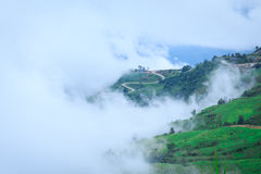 A mist over the Mountain in Morning Royalty Free Stock Image