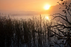 Mist over the river. At sunrise royalty free stock photography