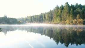 Mist over the river. Autumn beautiful landscape of forest is reflected in the water on the riverbank. Mist over the river. Autumn beautiful landscape of forest stock video footage