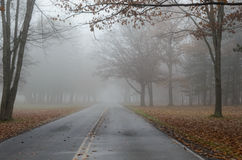 Mist Over Road in Autumn Royalty Free Stock Photography