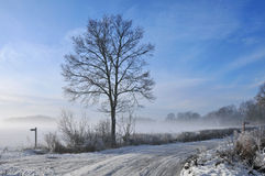 Mist over snow covered fields Stock Image