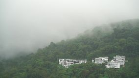 A mist over trees. Beautiful footages for your eyes stock video
