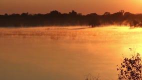 Mist over water stock video
