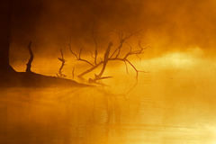 Mist over water royalty free stock photo