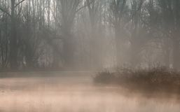 Morning mist over a river Royalty Free Stock Photo