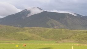 Mist på berget Arkivbild