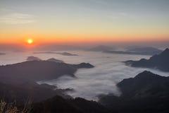 Mist på den Phu Chifa, Thailand Arkivbilder