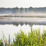 Mist på en sjö på gryning Royaltyfri Fotografi