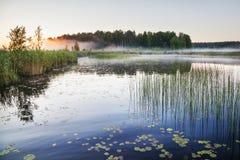 Mist på en sjö på gryning Fotografering för Bildbyråer