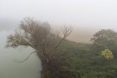 Mist på floden Arkivbild