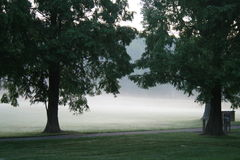 Mist in Park stock afbeelding