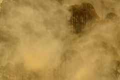 Mist. In the pine forest in utrakhand Royalty Free Stock Images